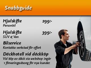 Snabbguide320x240px.jpg